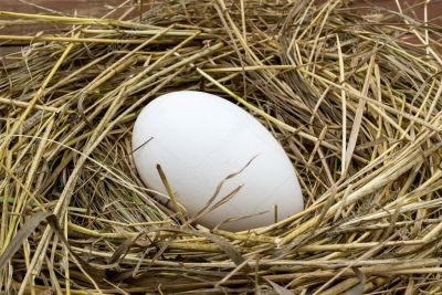 Doğal Kaz Yumurtası (1 adet)