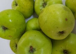 Doka Organik - Organik Ekşi Yeşil Elma (kg)