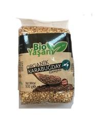 Eko Bio Yaşam - Organik Karabuğday 500 gr