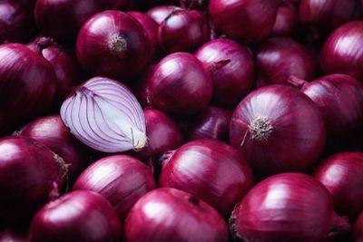 Organik Kırmızı Soğan kg