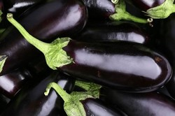Eren Aydın - Organik Patlıcan (kg)