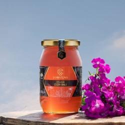 Eğriçayır - Organik Şahbaz Çaylı Çiçek Balı 450 gr