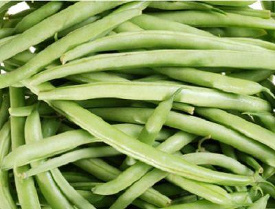 Organik Taze Fasulye (500 gr)