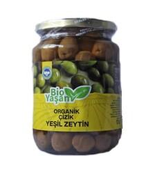 Eko Bio Yaşam - Organik Yeşil Çizik Zeytin Net: 420 gr
